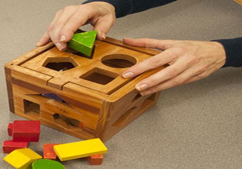 Occupational Therapy Box Toy