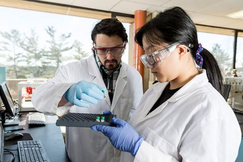 Students in Clarkson University's Department of Chemistry and Biomolecular Science conduct research in a lab