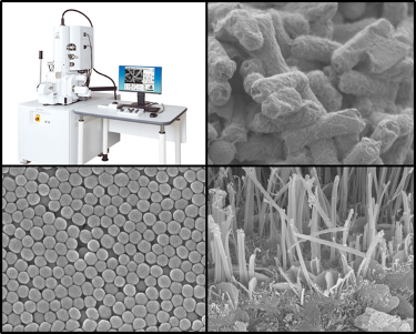 Scanning Electron Microscope Device